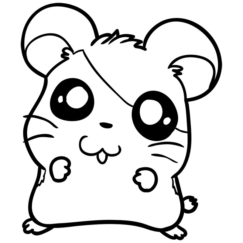 Learn easy to draw Adorable Hamster step 09
