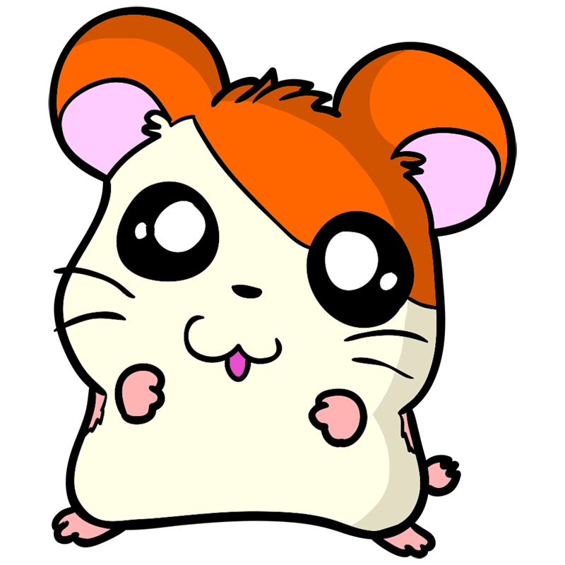 Learn easy to draw Adorable Hamster step 10