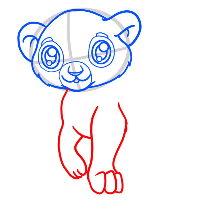 Learn easy to draw Baby Lion step 04