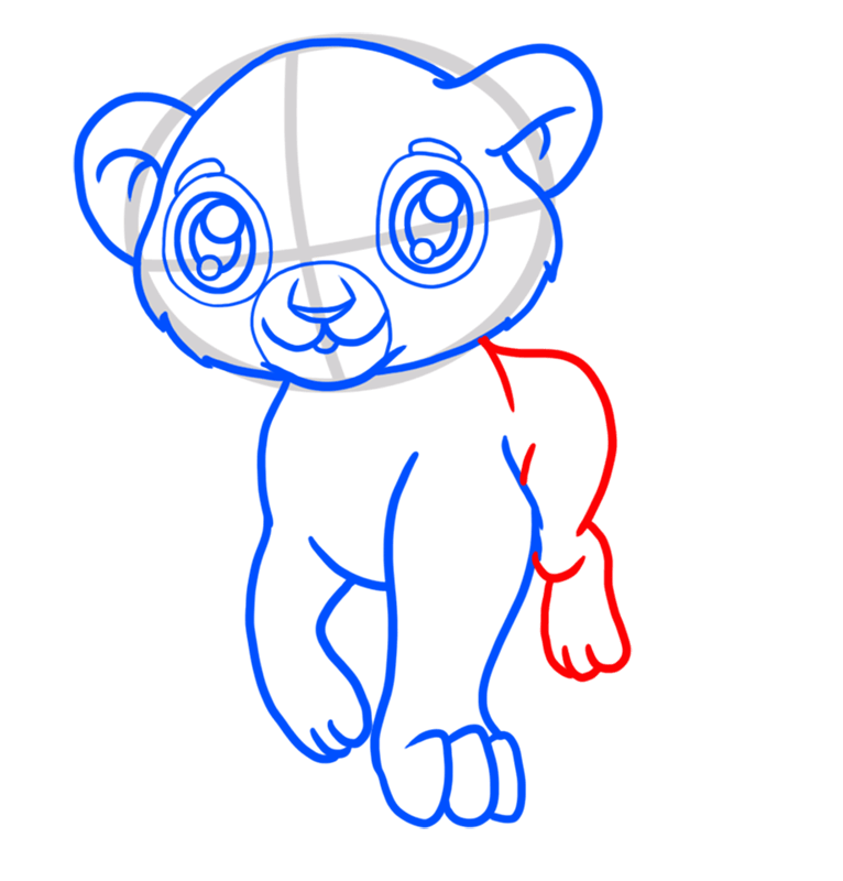 Learn easy to draw Baby Lion step 05