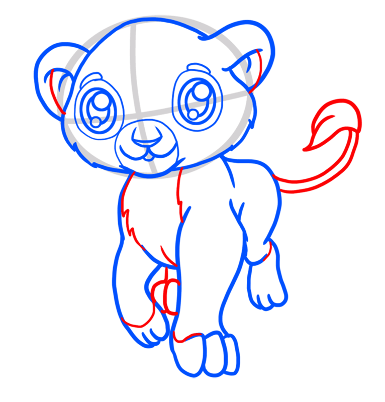 Learn easy to draw Baby Lion step 06