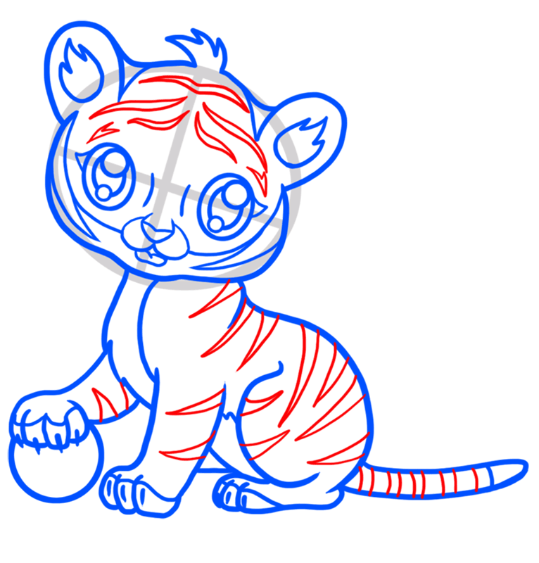 Learn easy to draw Baby Tiger step 07