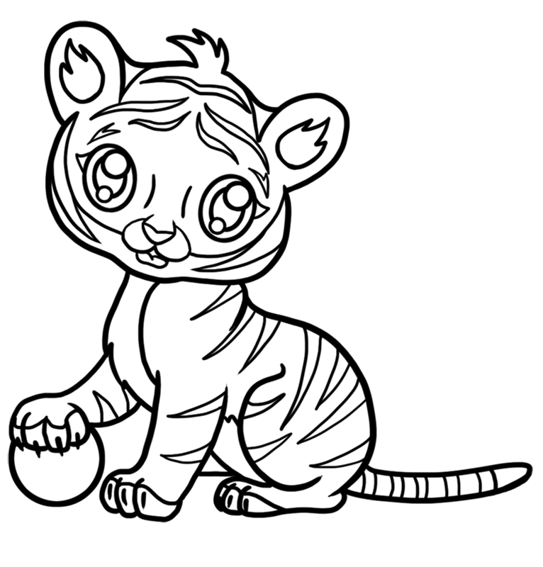 Learn easy to draw Baby Tiger step 08
