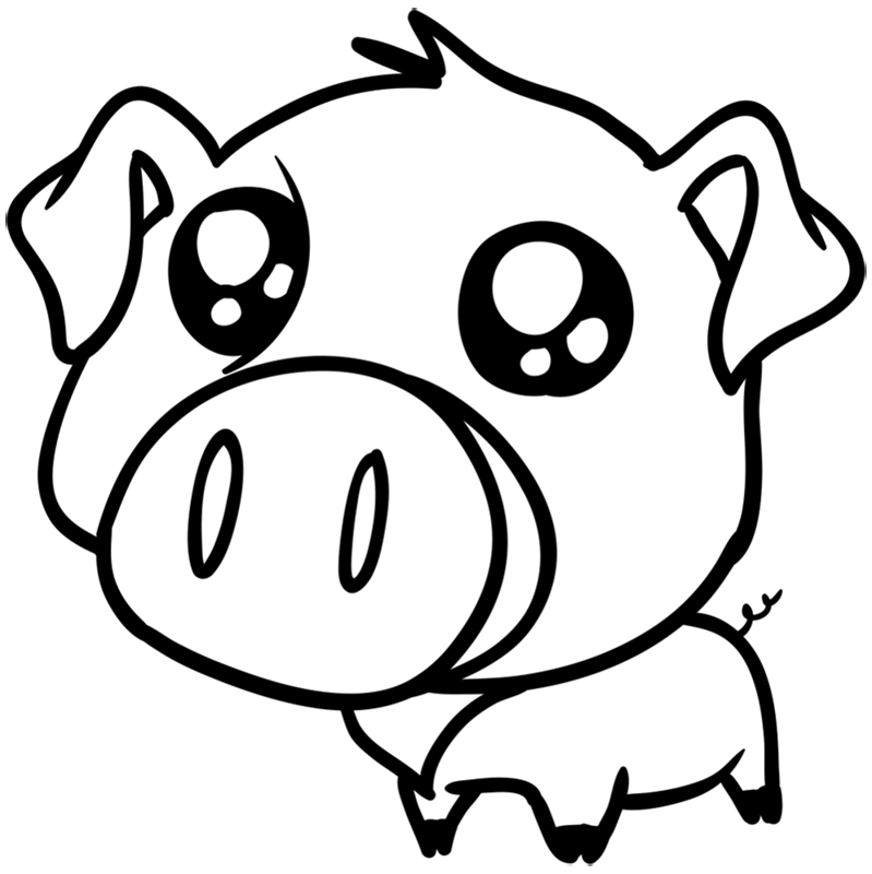 Learn easy to draw Cute Pig step 09
