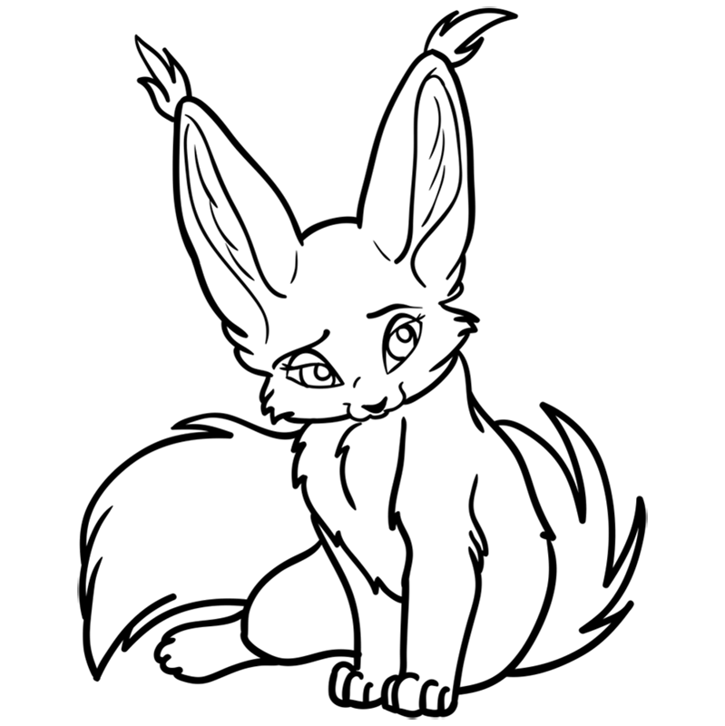 Learn easy to draw Nice Fennec Fox step 12