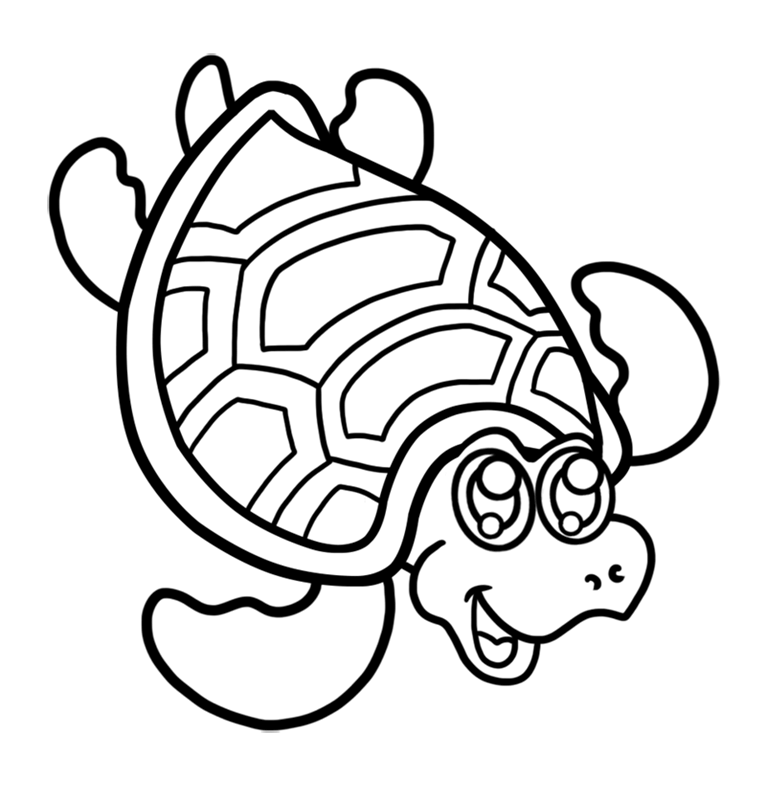 Learn easy to draw Nice Turtle step 08