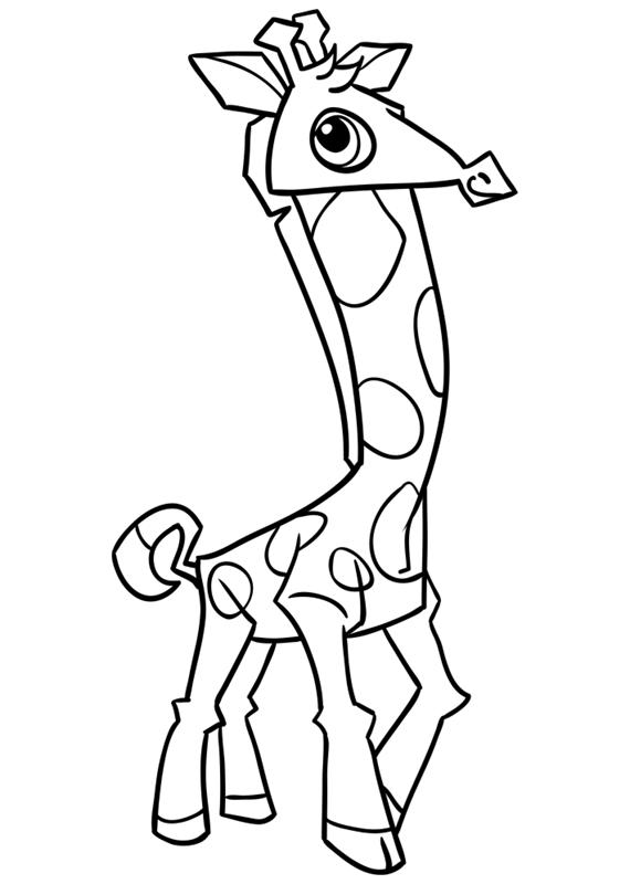 Learn easy to draw Giraffe step 14