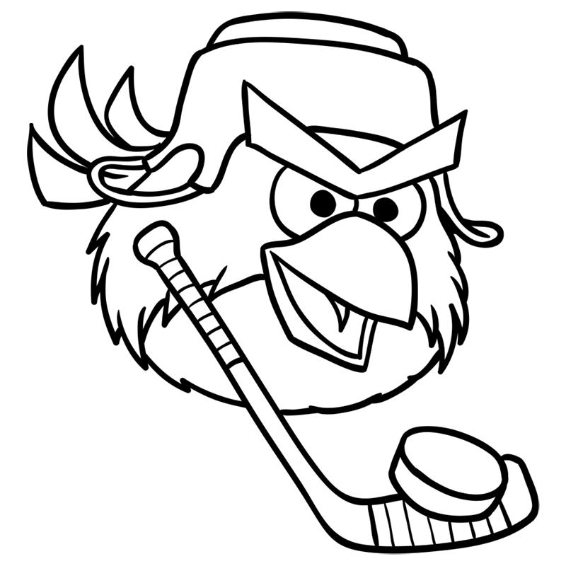 Learn easy to draw Hockey Bird step 09
