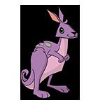 Learn easy to draw Kangaroo icon