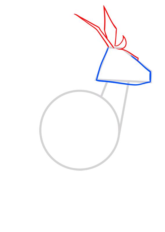 Learn easy to draw Kangaroo step 03