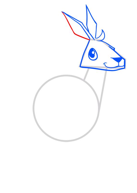 Learn easy to draw Kangaroo step 05