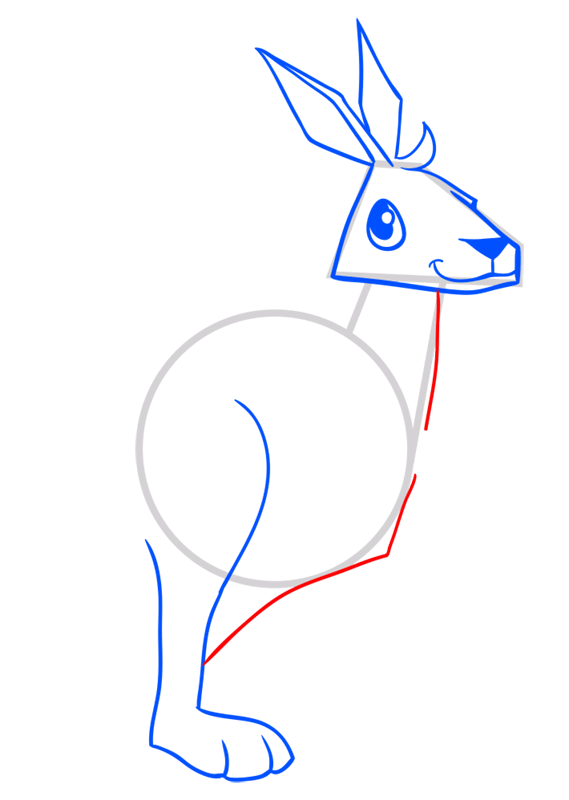 Learn easy to draw Kangaroo step 07