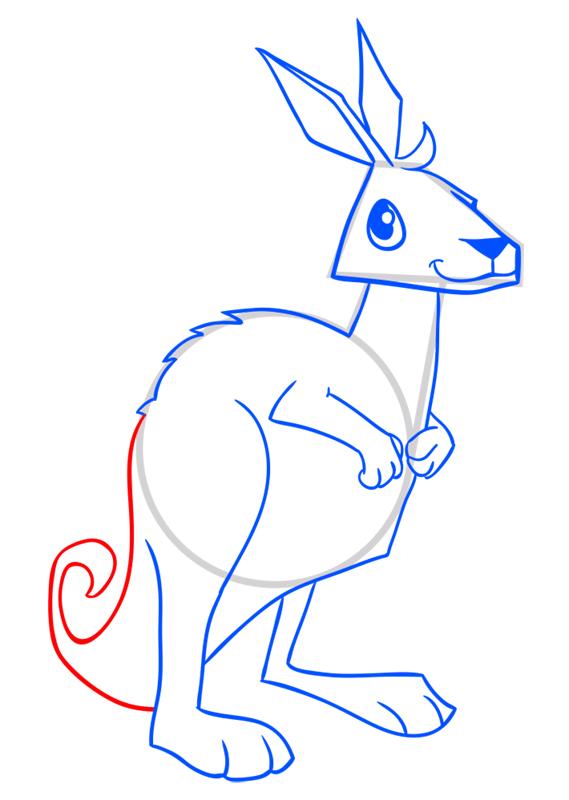 Learn easy to draw Kangaroo step 11