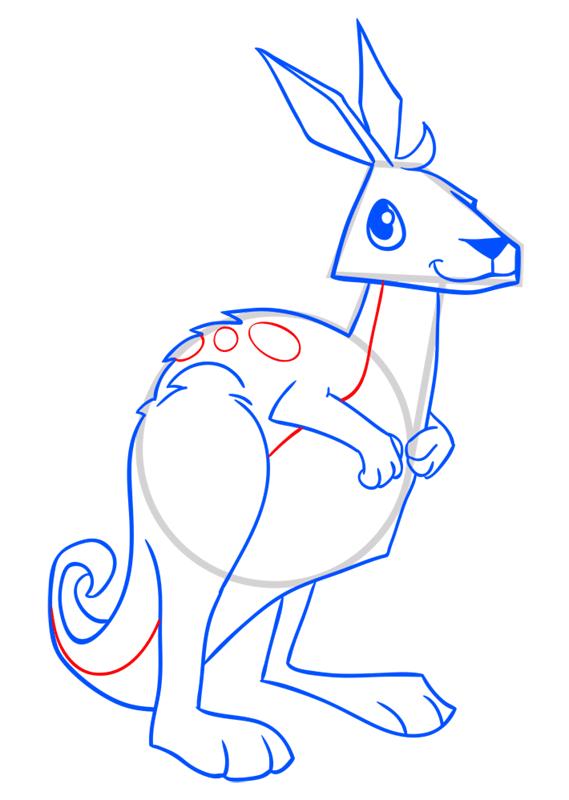 Learn easy to draw Kangaroo step 13