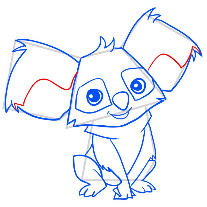 Learn easy to draw Koala step 11