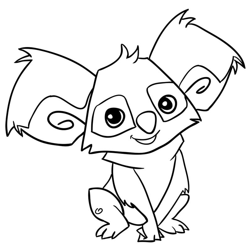 Learn easy to draw Koala step 13