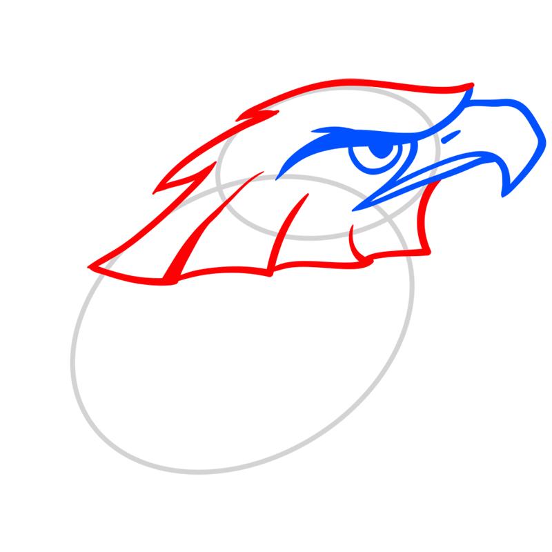 Learn easy to draw Nighty Philadelphia Eagle step 04