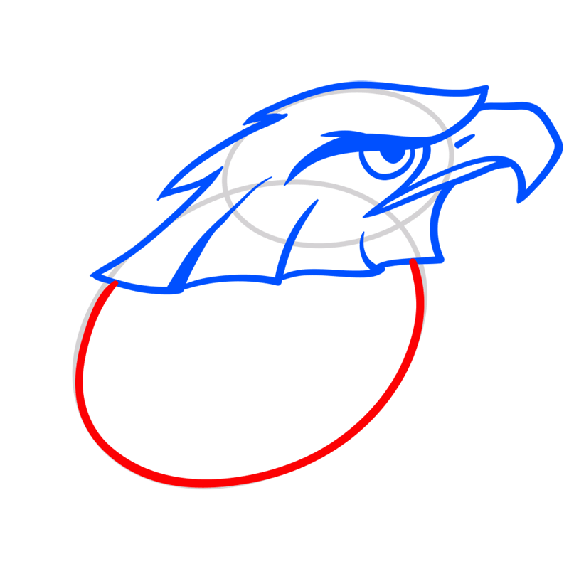 Learn easy to draw Nighty Philadelphia Eagle step 05