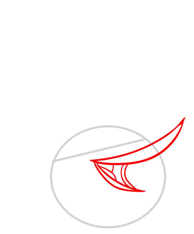 Learn easy to draw Orange Bird step 02