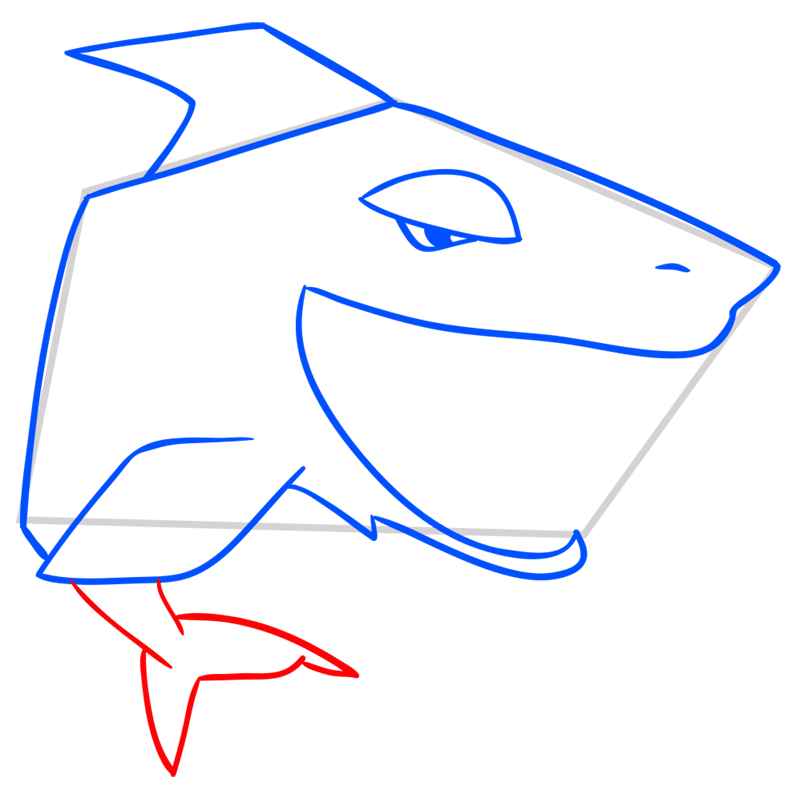 Learn easy to draw Shark step 07