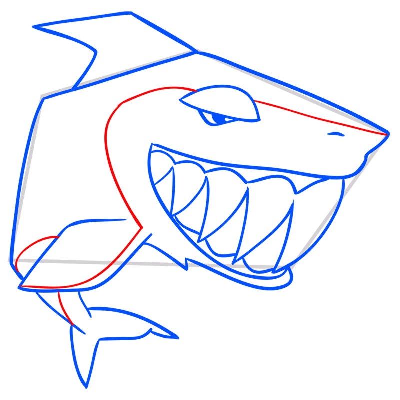 Learn easy to draw Shark step 09