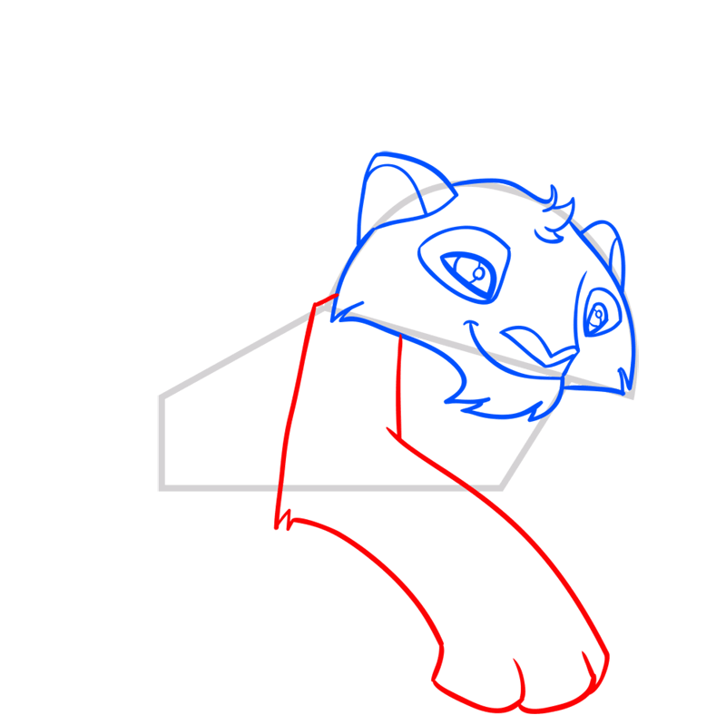 Learn easy to draw Snow Leopard step 06