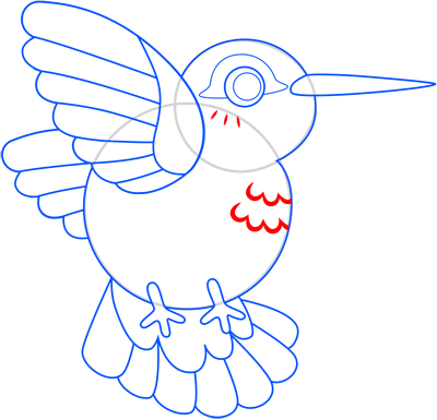 Learn easy to draw colibri step 11