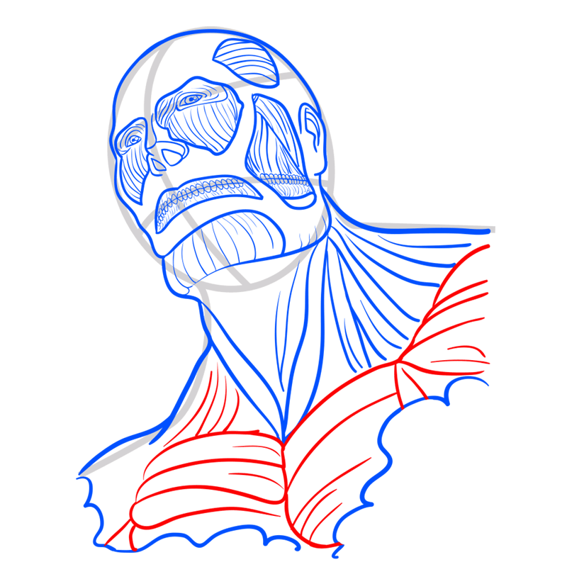 Learn easy to draw colossal titan step 08