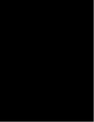 Learn easy to draw kakadu step 11