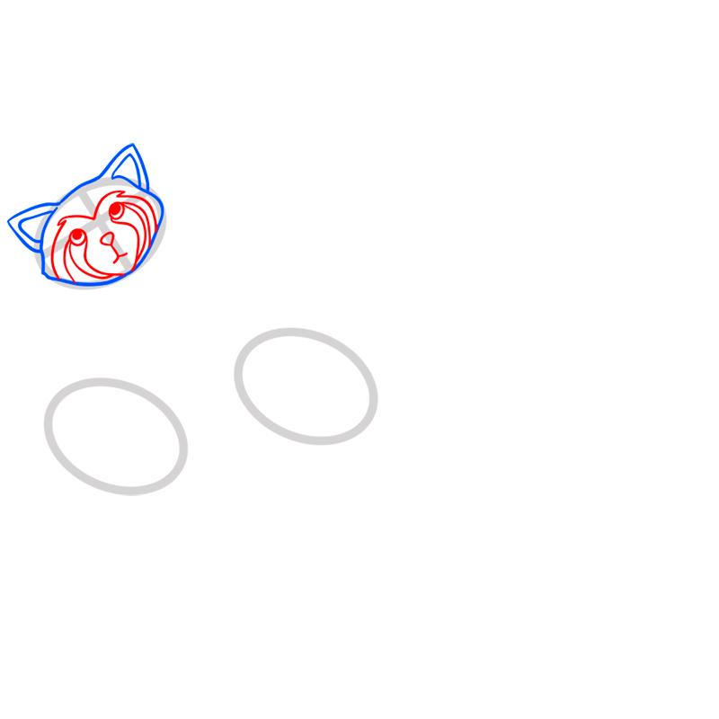 Learn easy to draw pabu step 03