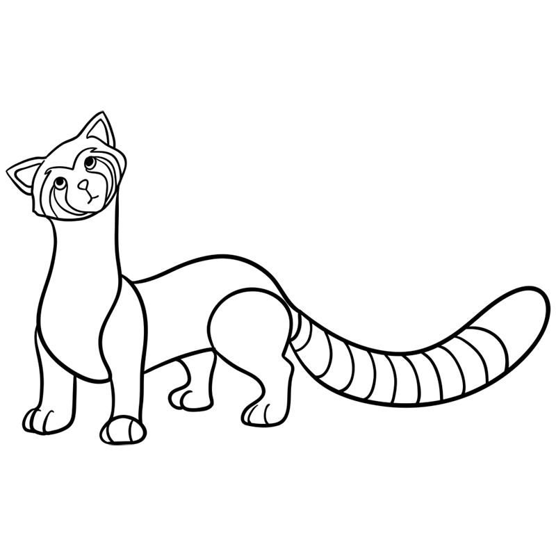 Learn easy to draw pabu step 09
