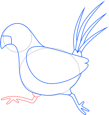 Learn easy to draw pheasant step 07