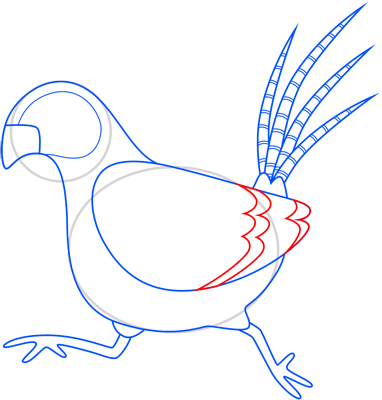 Learn easy to draw pheasant step 10