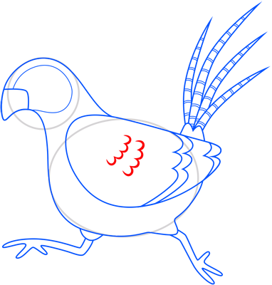 Learn easy to draw pheasant step 11