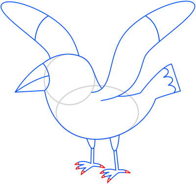 Learn easy to draw seagull step 09