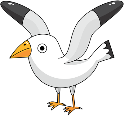 Learn easy to draw seagull step 12
