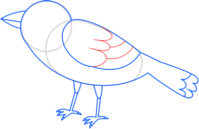 Learn easy to draw sparrow step 09