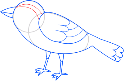 Learn easy to draw sparrow step 10