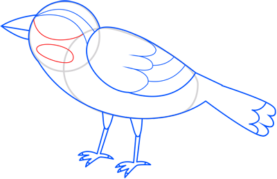 Learn easy to draw sparrow step 11
