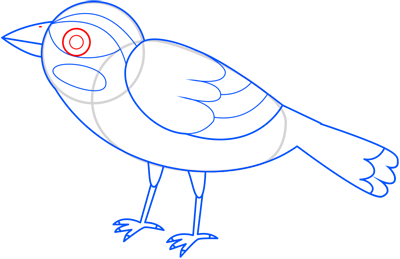 Learn easy to draw sparrow step 12