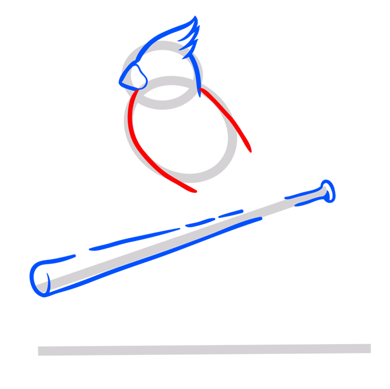 Learn easy to draw st. louis cardinals logo step 04