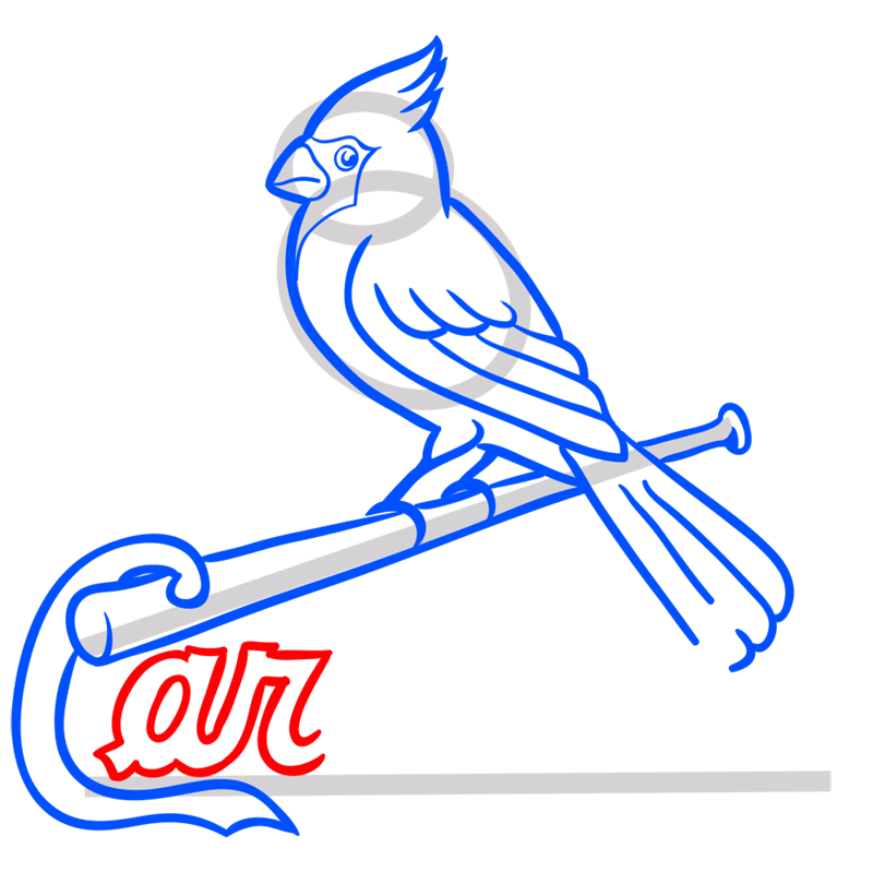 Learn easy to draw st. louis cardinals logo step 09
