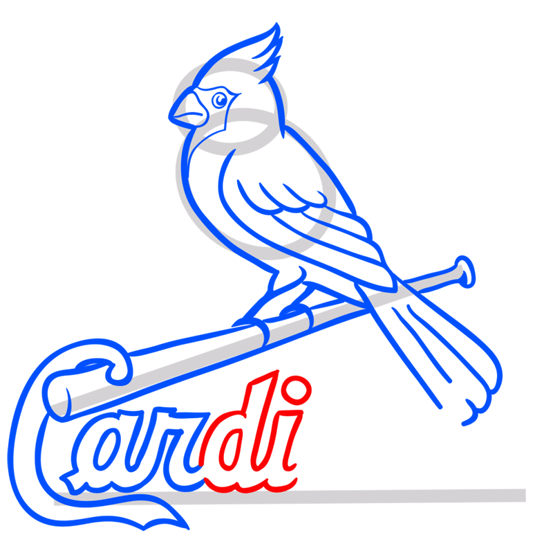 Learn easy to draw st. louis cardinals logo step 10