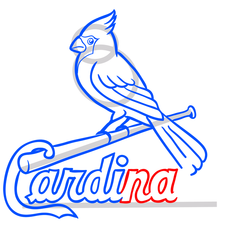 Learn easy to draw st. louis cardinals logo step 11