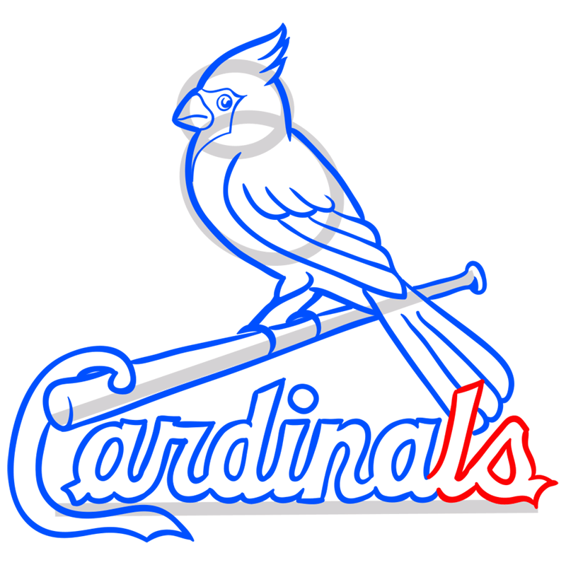 Learn easy to draw st. louis cardinals logo step 12
