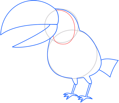 Learn easy to draw toucan step 07