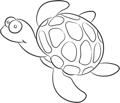 Learn easy to draw how easy to draw a little turtle 9