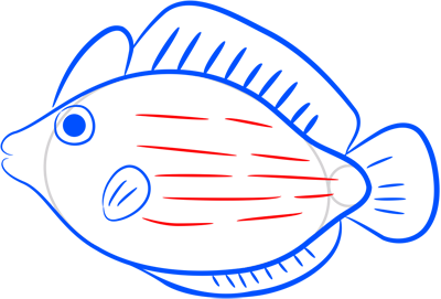 Learn easy to draw how easy to draw a pink fish 8