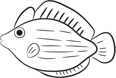 Learn easy to draw how easy to draw a pink fish 9
