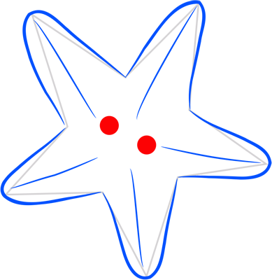 Learn easy to draw how easy to draw a starfish 4
